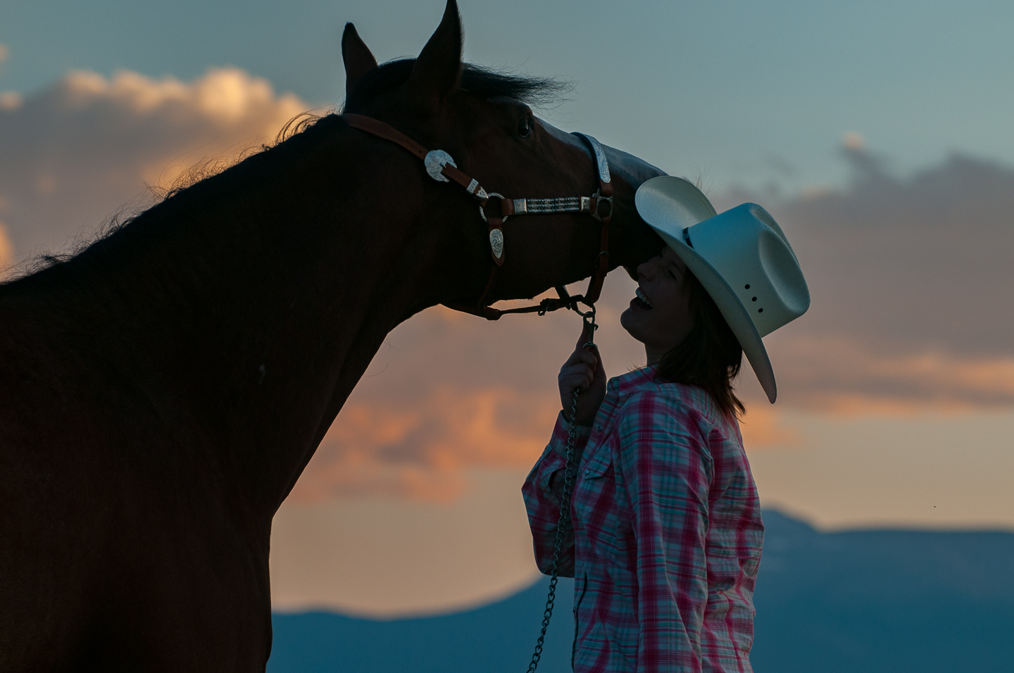 cowgirl horse sunset western equestrian